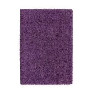 Koberec Guardian 128 Purple, 170x120 cm