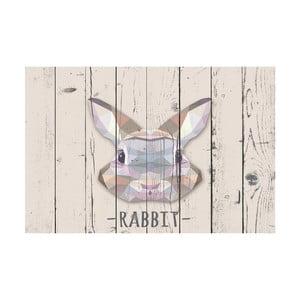 Vinylový koberec Rabbit, 100x150 cm
