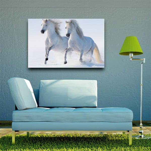 Obraz Na bielom koni, 45x70 cm