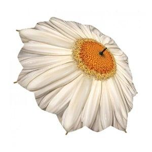 Dáždnik Flower Collection, daisy