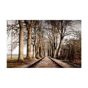 Obraz Na ceste, 70x100 cm