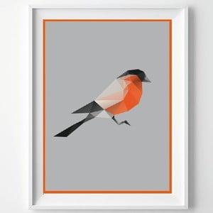 Plagát Birdie, A3
