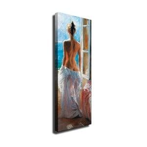 Nástenný obraz na plátne Window, 30 × 80 cm