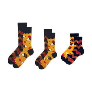 Rodinná sada 3 párov ponožiek v darčekovom balení Many Mornings Apple Hedgehog Grand