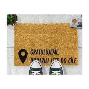 Rohožka Artsy Doormats Cieľ, 40 x 60 cm