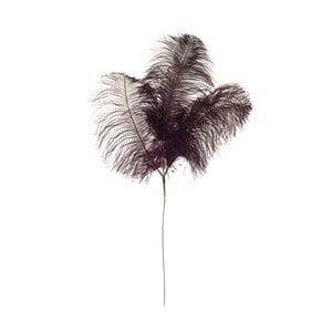 Dekoratívne pštrosie perie Aubergine, výška 61cm