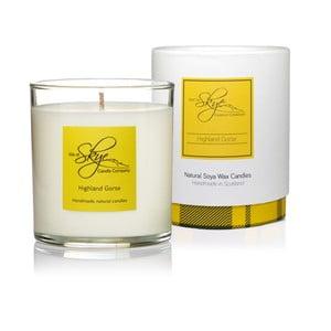 Sviečka s vôňou borovice, cédrového dreva a jantáru Skye Candles Tumbler, dĺžka horenia 45 hodín
