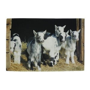 Predložka Dwarf Goats 75x50 cm