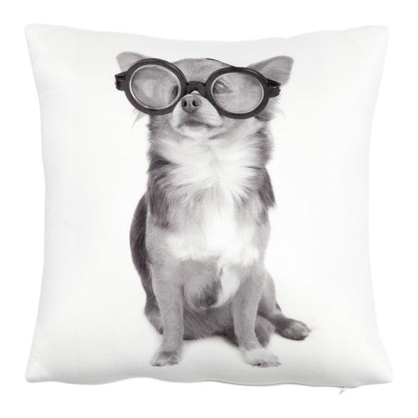 Vankúš s náplňou Dog with Glasses, 30x30 cm