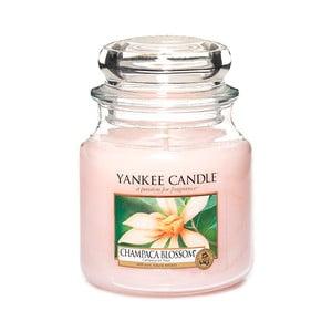 Vonná sviečka Yankee Candle Kvet Magnólie Champaca, doba horenia 65 - 90 hodín