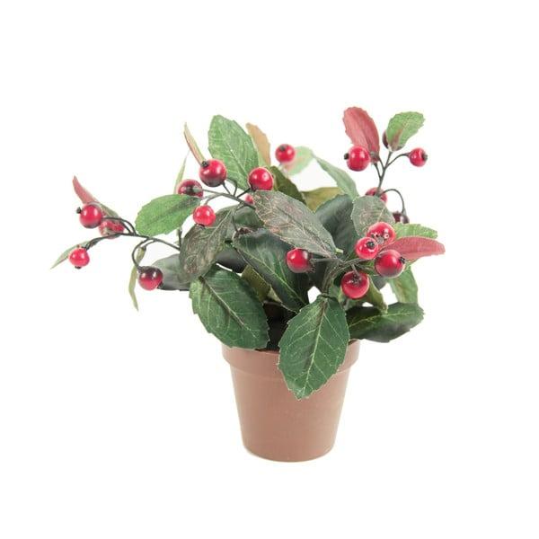 Umelá kvetina Gualtheria