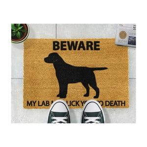 Rohožka Artsy Doormats Labrador, 40x60cm