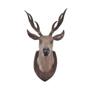 Teaková dekorácia jelenej hlavy Erosi