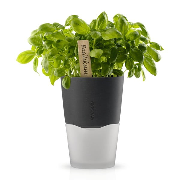 Samopodlievací kvetináč na bylinky Eva Solo Stone Grey, 13 cm