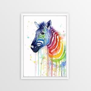 Obraz Piacenza Art Rainbow Zebra, 30 × 20 cm