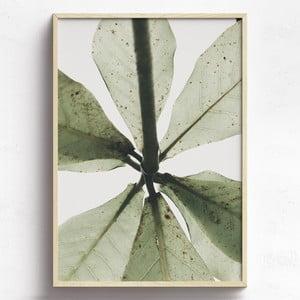 Obraz v drevenom ráme HF Living Tefia, 21 x 30 cm