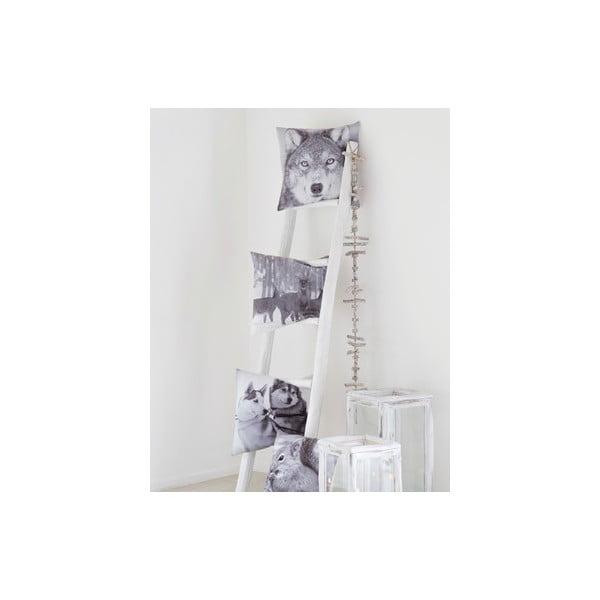 Vankúš Squirrel White, 45x45 cm