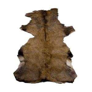 Jelenia koža, 100x150 cm