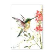 Autorský plagát Hummingbird od Surena Nersisyana, 30 x 21 cm