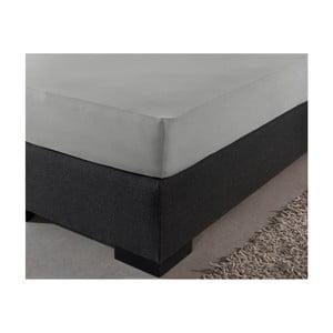 Sivá plachta z ranforce bavlny Zensation Zen, 180×200 cm