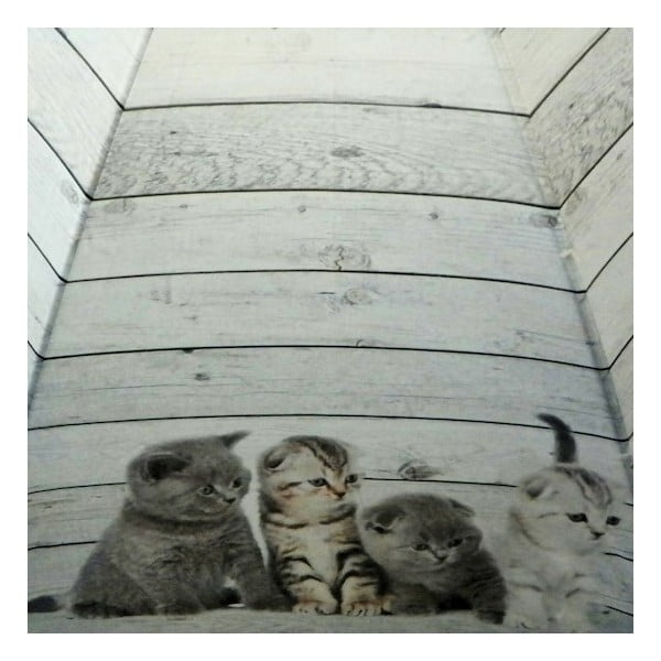 Dáždnik Scaffold Wood Kittens Grey