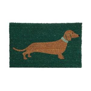 Zelená rohožka Premier Housewares Sausage Dog, 40x60cm
