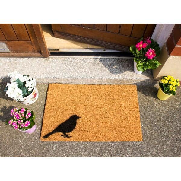 Rohožka Artsy Doormats Bird, 40x60cm