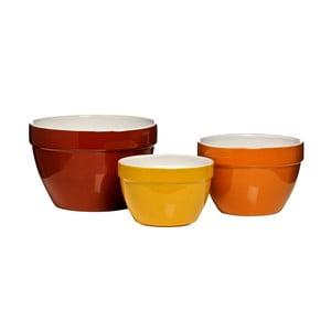 Sada 3 misiek Premier Housewares Autumn