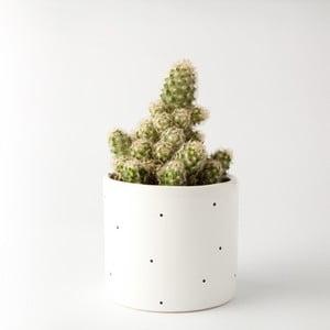 Kvetináč FOR.REST Design Dots, 11cm