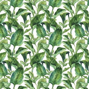 Tapeta na stenu Dekornik Leaves, 50 x 280 cm