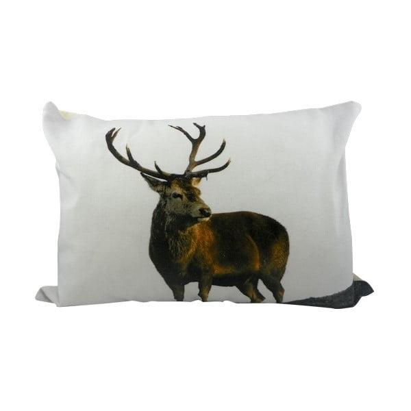 Vankúš Deer 50x35 cm