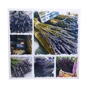 Obraz Ewax Lavender Canvas, 60×60cm