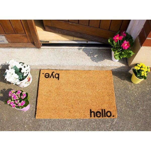 Rohožka z prírodného kokosového vlákna Artsy Doormats Hello, Bye, 40×60 cm