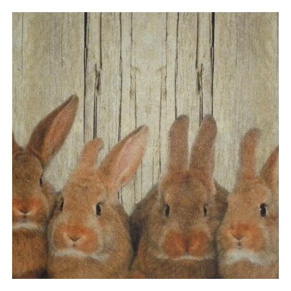Prestieranie Damily Brown Rabbits 40x30 cm
