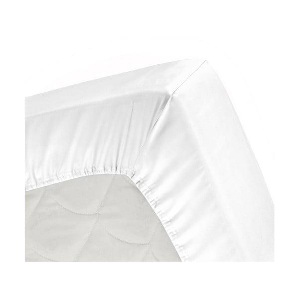 Plachta Cinderella White, 180x200 cm