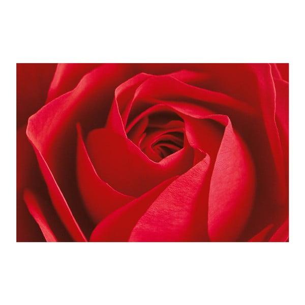 Maxi plagát La Rose, 175x115 cm