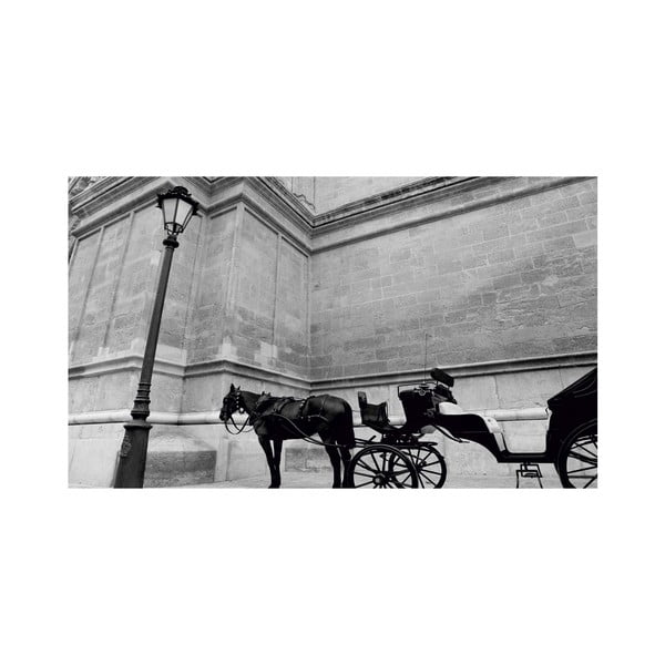 Obraz Black&White no. 14, 41x70 cm