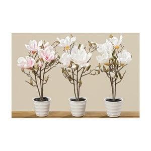 Sada 3 kvetináčov s umelými magnóliami Boltze, výška 50 cm