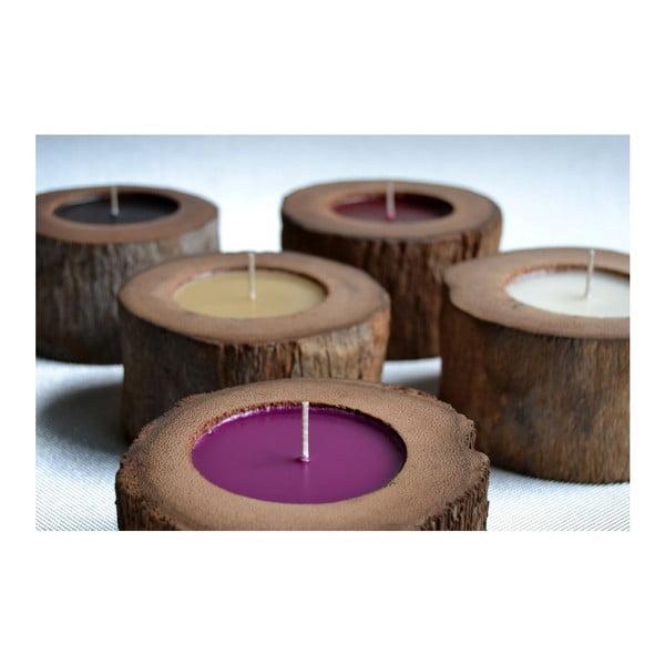 Palmová sviečka Legno Bruciato s vôňou medu, 80 hodín horenia