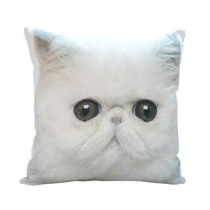 Vankúš White Cat, 45x45 cm
