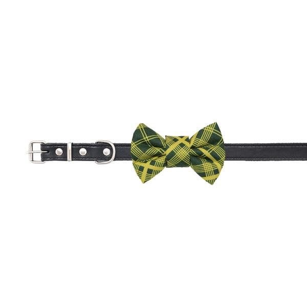 Zelený károvaný charitatívny psí motýlik Funky Dog Bow Ties, veľ. M