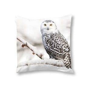 Obliečka na vankúš Muller Textiels Snowy Owl, 50 x 50 cm