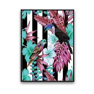 Plagát s papagájmi, čierno-biele pozadie, 30 x 40 cm