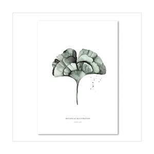 Plagát Leo La Douce Ginko Leaf, 21x29,7cm