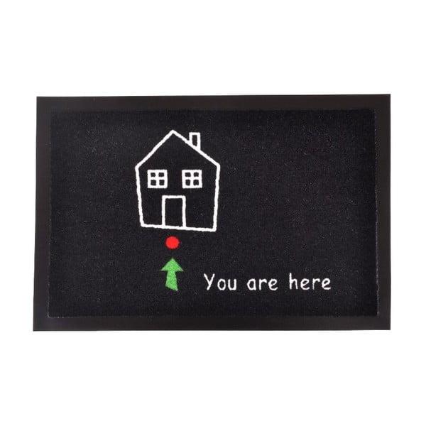 Rohožka Zala Living You Are Here, 40×60 cm