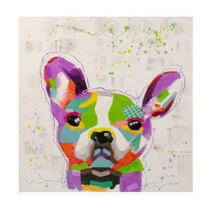 Obraz na plátne Bulldog, 80x80 cm