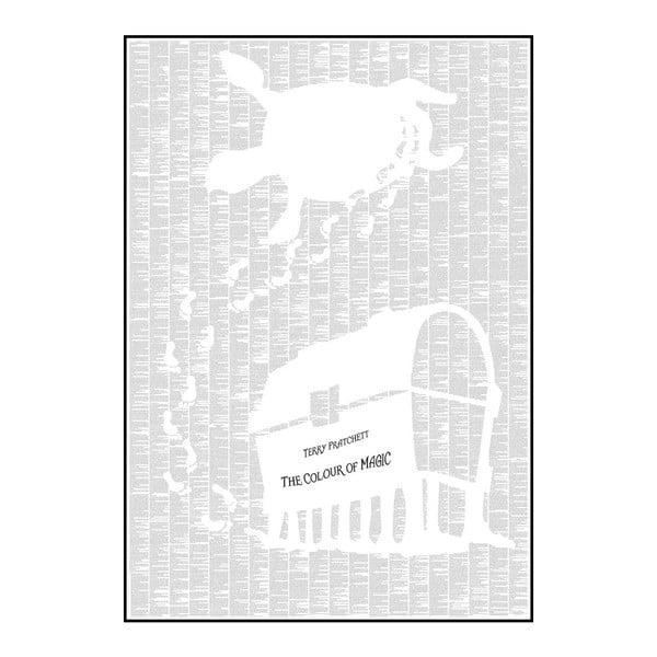Knižný plagát Farba mágie, 70x100 cm
