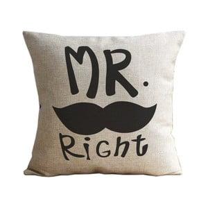 Obliečka na vankúš Mr. Moustache, 45x45 cm