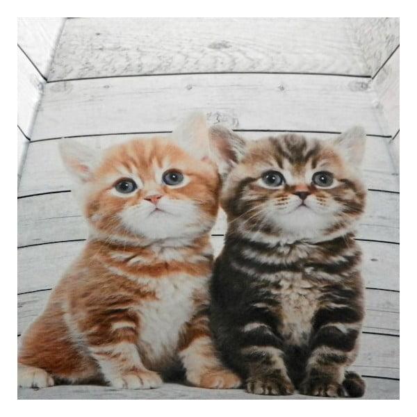 Dáždnik Scaffold Wood Kittens Red