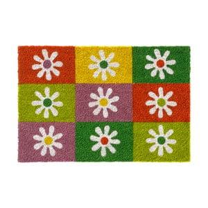 Rohožka Hamat Squares & Flowers, 40 x 60 cm